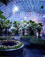 Crystal Gardens